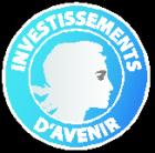 http://www.medecinesciences-strasbourg.fr/wp-content/uploads/2016/12/Investissement_Avenir-e1483009937777.png
